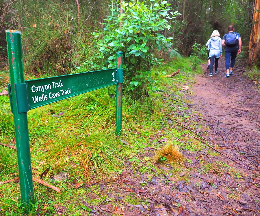 Decide between Canyon Track and Wells Cave Track
