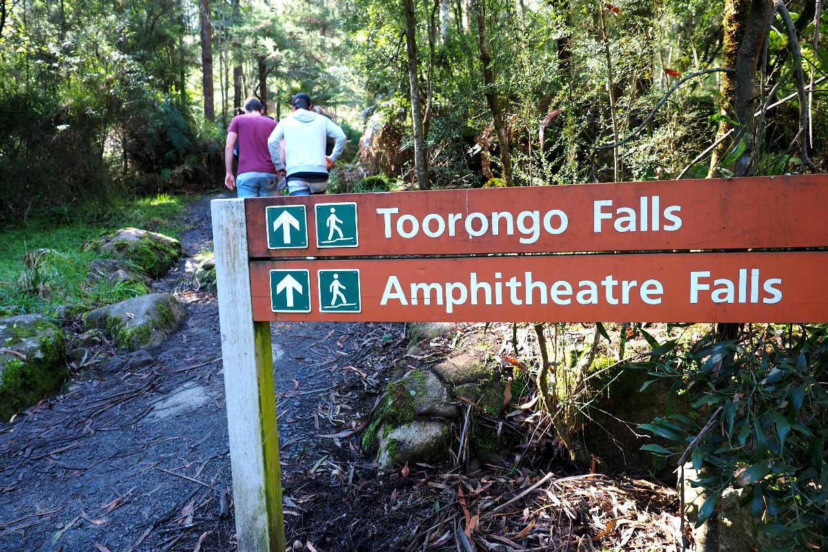 Entry to Toorongo Falls Walk