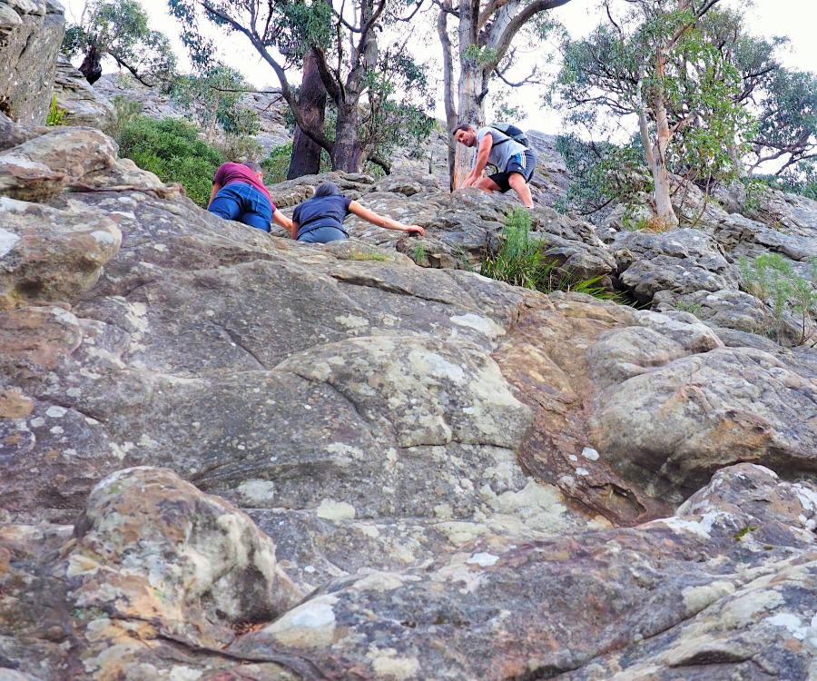 Rock climbing on Wells Cave Track Cathedral Ranges