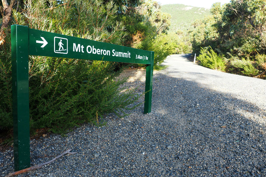 Start of Mt Oberon Hike