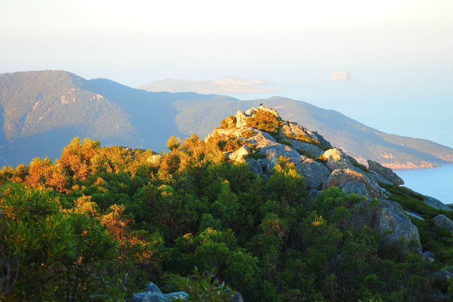 View of Wilsons Prom lighthouse from Mt Oberon