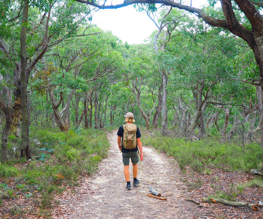 Walking Cowans Track back to Obriens Crossing
