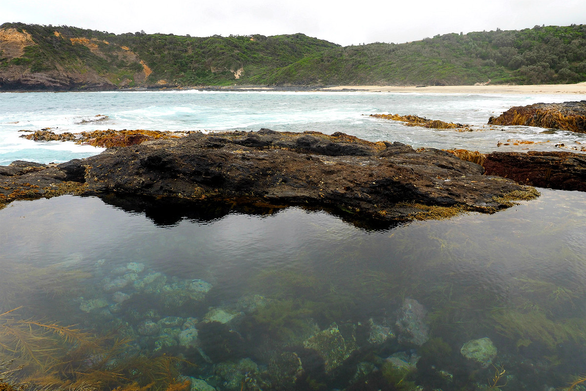 Bushrangers Bay Rock Pools
