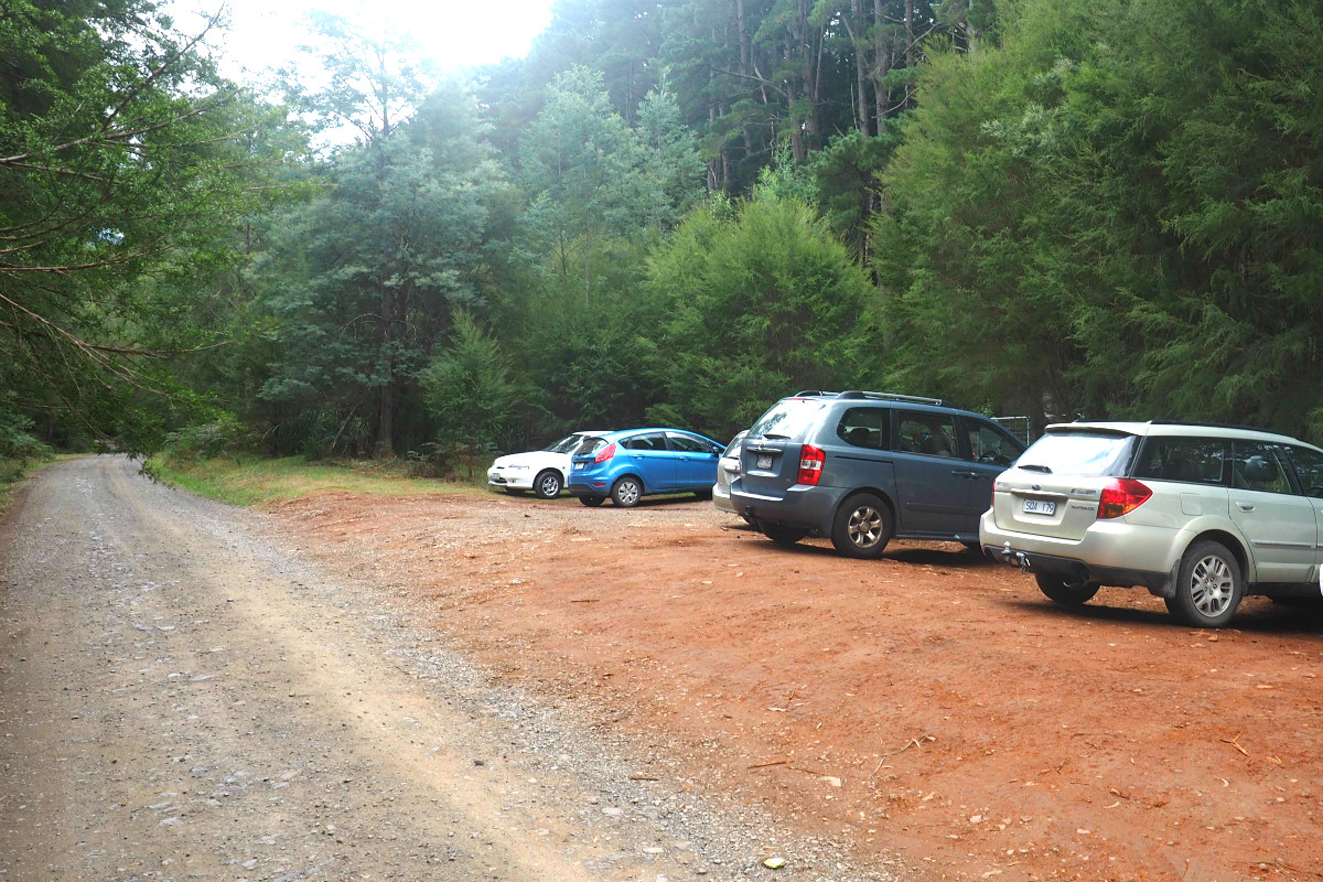 East Warburton Redwood Forest Carpark