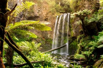 The Stunning Hopetoun Falls